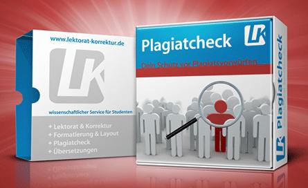 Plagiatsprüfung für eine Bachelorarbeit